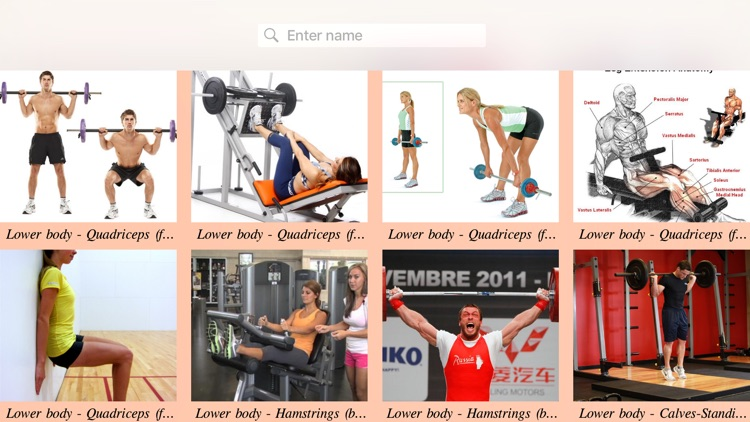 Body Building Exercises Guide