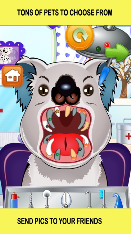 Pet Vet Dentist Doctor - Games for Kids Free