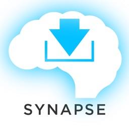 Mandarin Chinese Vocabulary Synapse