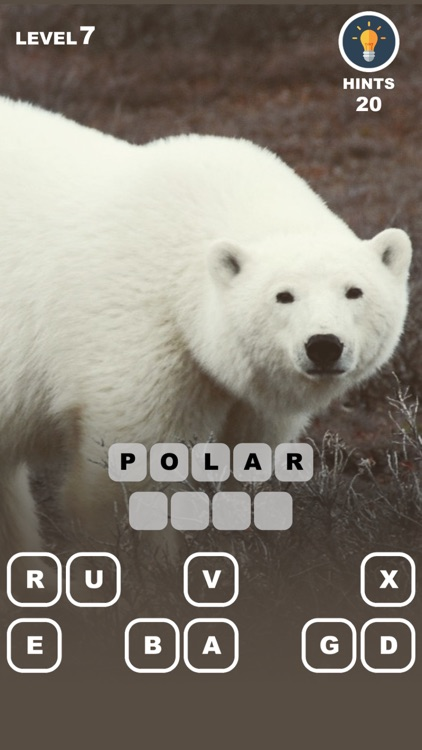 Animal School - after effect photo trivia game screenshot-1
