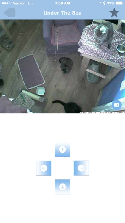 iDogCam screenshot-3