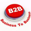 B2B Marketing Online: Consejos de marketing y la Guía de Medios de Comunicación Social