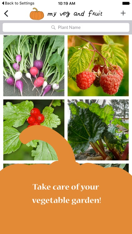 myVeg&Fruit | The app to manage your vegetable garden screenshot-4