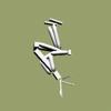 backhandsprings 2 (bhs2)