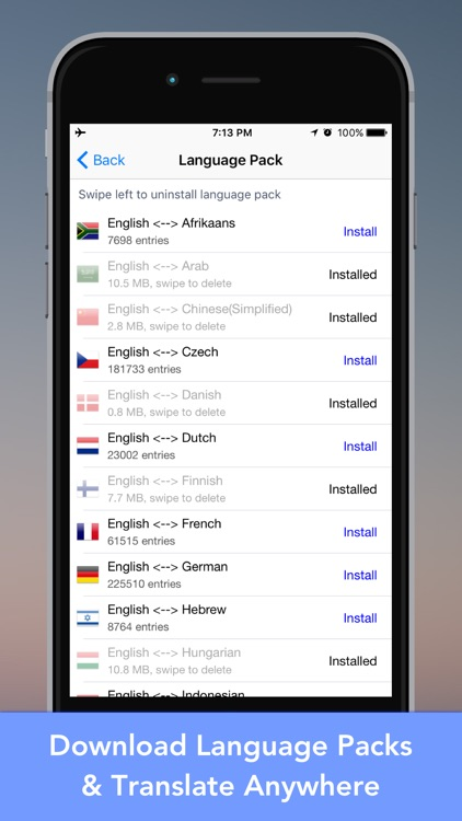 LingoCam Lite: Real-Time Translator & Dictionary screenshot-1