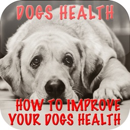 Dog's Health Problems - How To Improve Your Dog's Health+