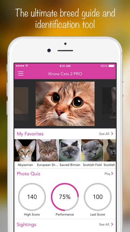 iKnow Cats 2 PRO - Cat Breed Guide