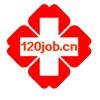 中国120医疗人才网