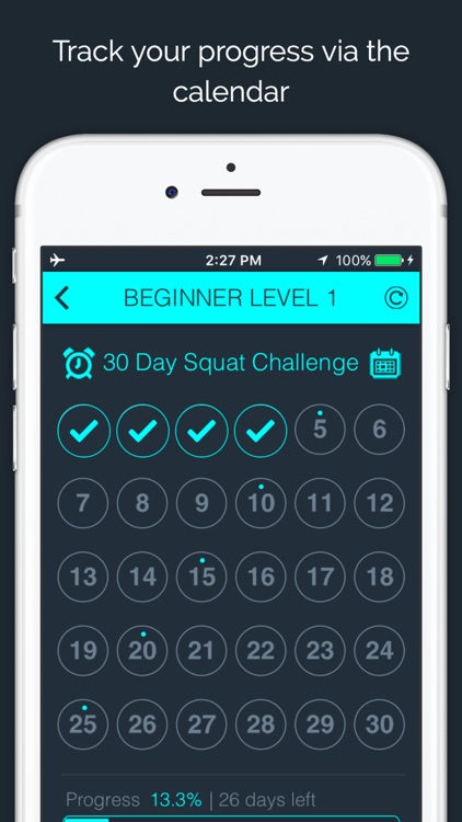 30 Day Squat Challenge by 30 Day Fit Body