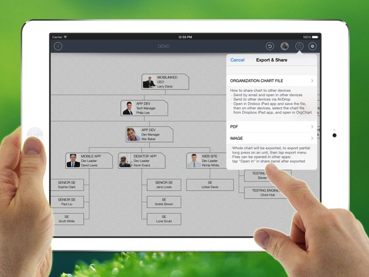 OrgChart - Organization Chart for Business,Project screenshot-4