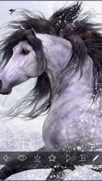 Horse Wallpapers HD - Unicorn & Horses Pictures