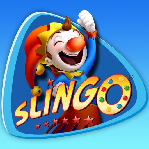 Bingo Slingo