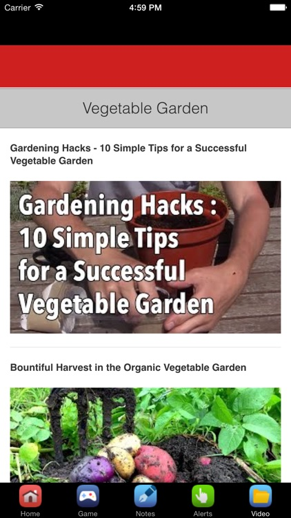 Vegetable Garden Design & Vegetable Gardening Tips screenshot-4