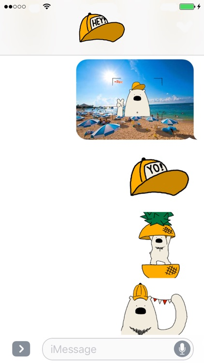 Polar Bear faces sticker screenshot-0