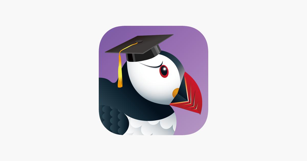 puffin pour ipad gratuit