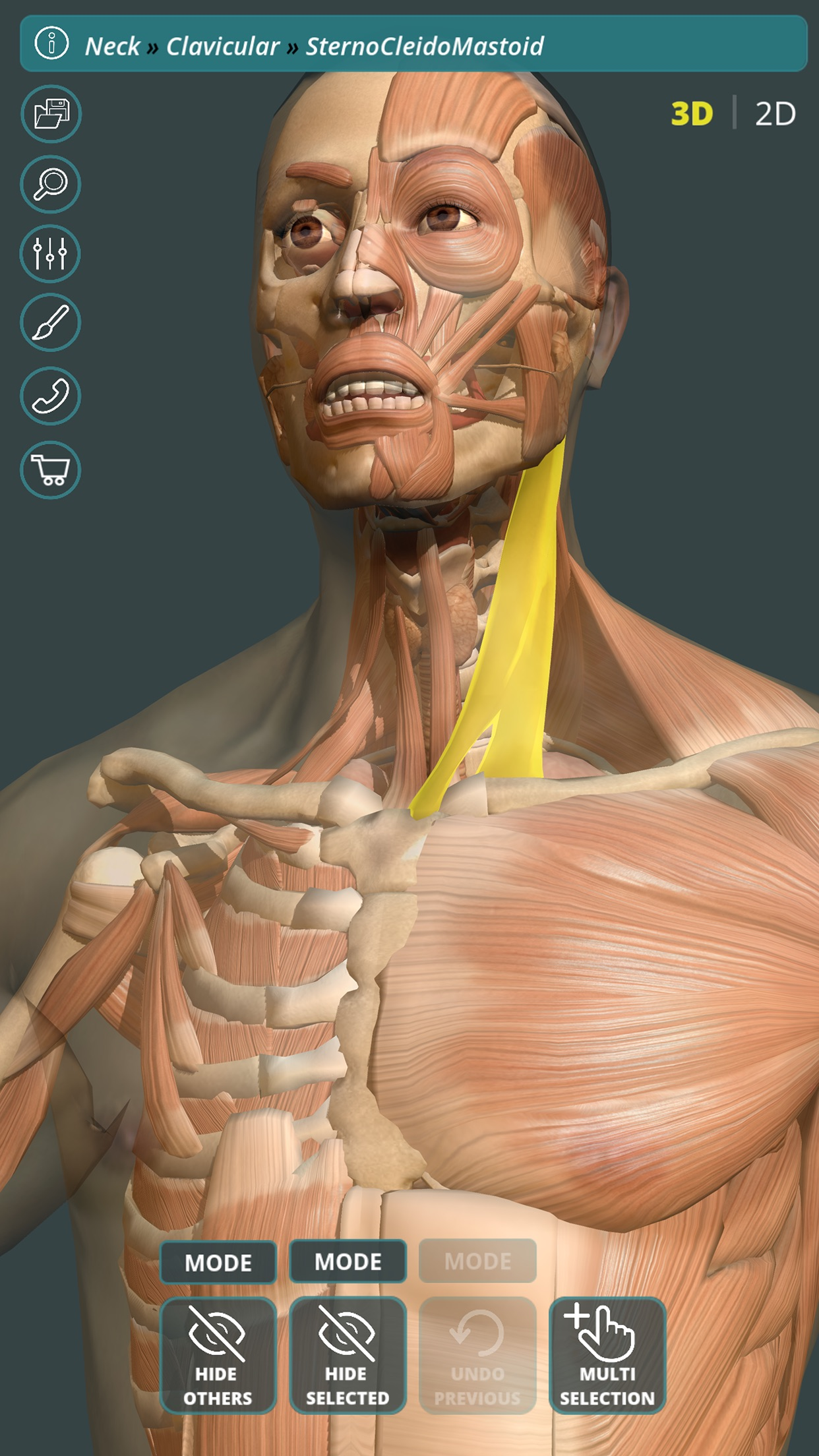 Visual Anatomy 3D | Human Screenshot