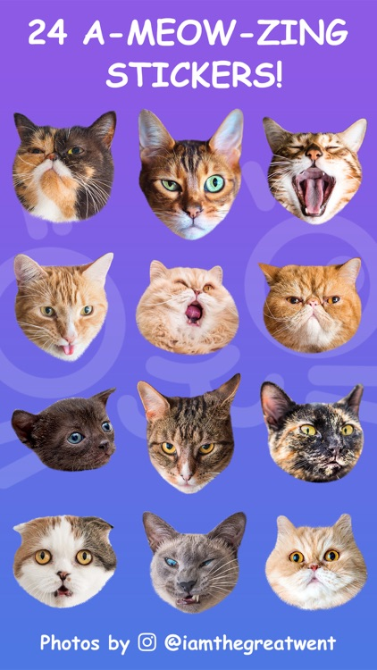 Cat Stamp! Cute Stickers of Cats screenshot-4