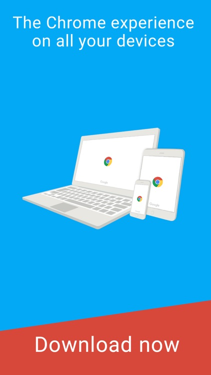 Google Chrome – The Fast and Secure Web Browser app image