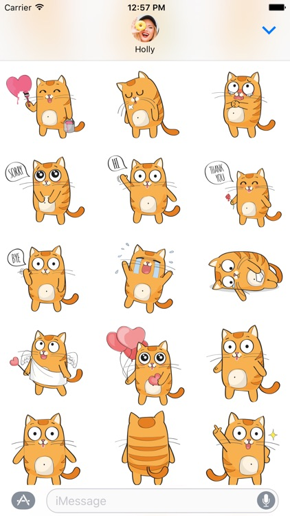 Kitty Cat – Cute Stickers for iMessage