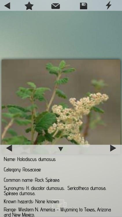 Medicinal Plants Collection HD screenshot-3