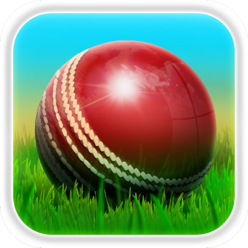 Cricket 3D : World Street Challenge