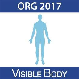 For Organizations - 2017 Human Anatomy Atlas