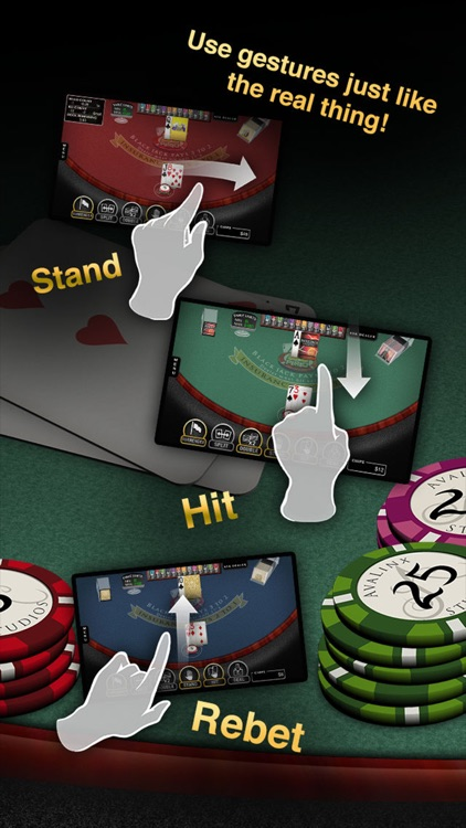 Blackjack Pro: 21 Vegas Casino screenshot-1