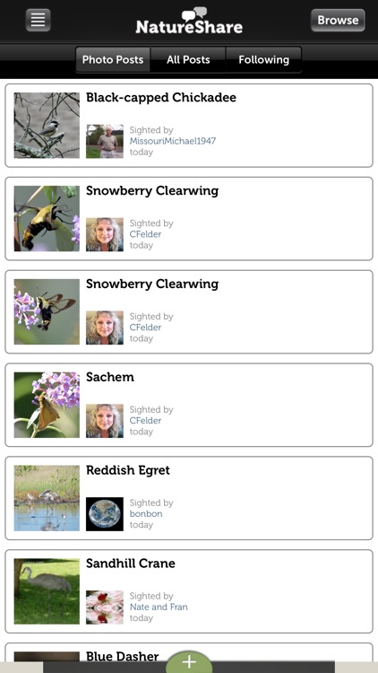 Audubon Owls Guide screenshot-4