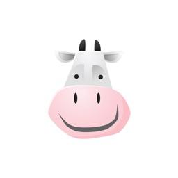 Kyoto Cow