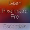 TMUTutorial for Pixelmator Pro - Swanson Digital, LLC Cover Art