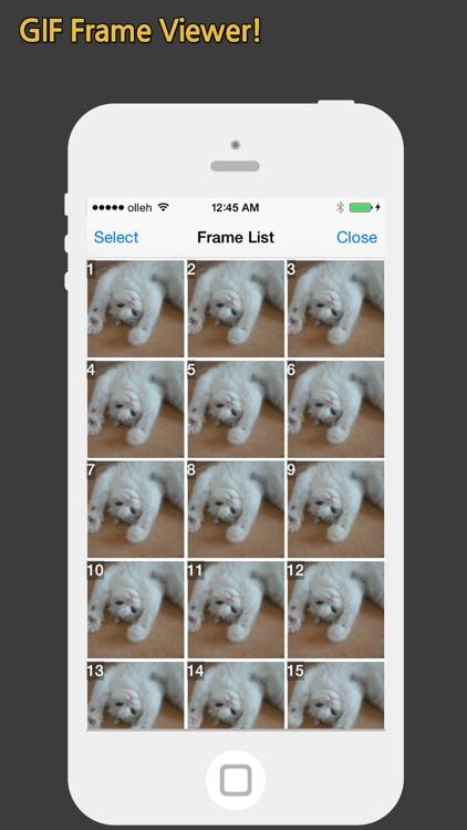 GIF Show Pro - GIF Viewer and Album screenshot-3