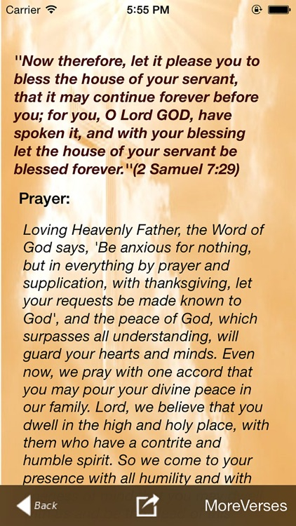 Promises & Prayers screenshot-4