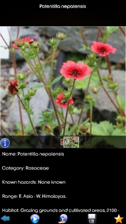 Medicinal Plants Encyclopedia screenshot-1