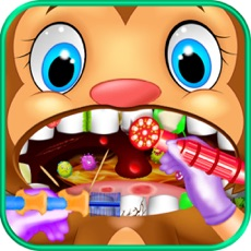 Activities of Celebrity Dentist Pet Surgery