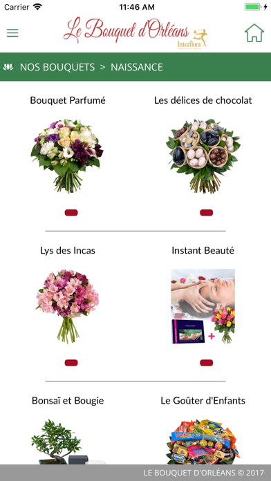 Le Bouquet d'Orléans screenshot three