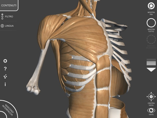 3D Anatomy for the Artist | v  1 2 | App Price Drops