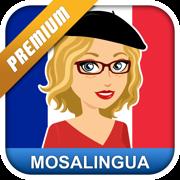 Learn French - MosaLingua