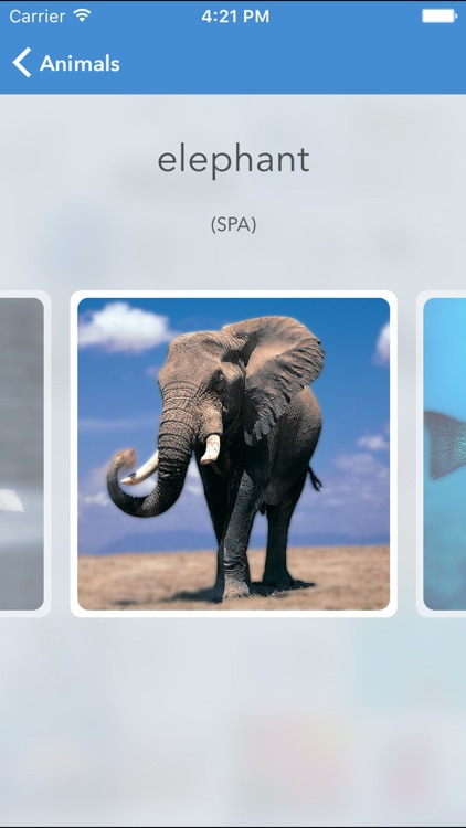 Visual dictionary EN-ES