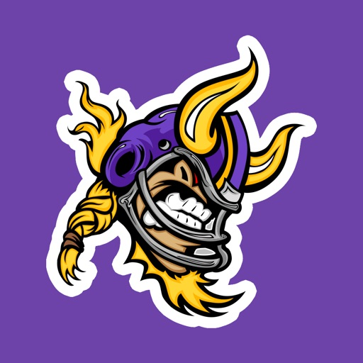 The Vikes Football: NFL Minnesota Vikings edition