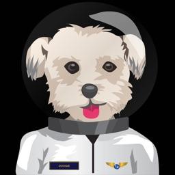 Commander Doogie
