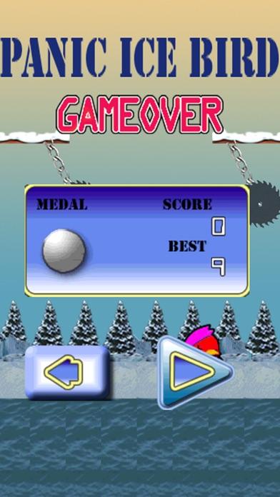 Panic Ice Bird screenshot two