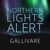 Northern Lights Alert Gällivare