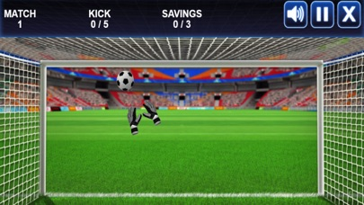 Save The Goal Goalkeeper Workout