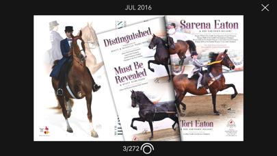 National Horseman Screenshot