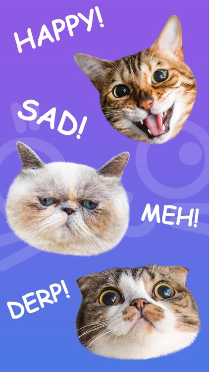 Cat Stamp! Cute Stickers of Cats screenshot-3