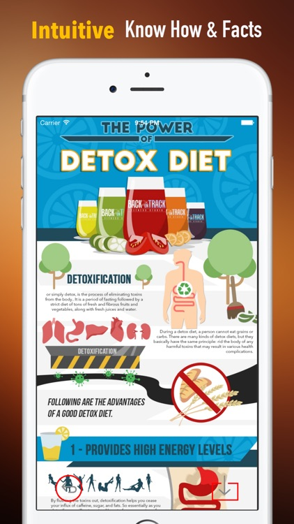 Detox Diet Cookbook: Healthy Weight Loss