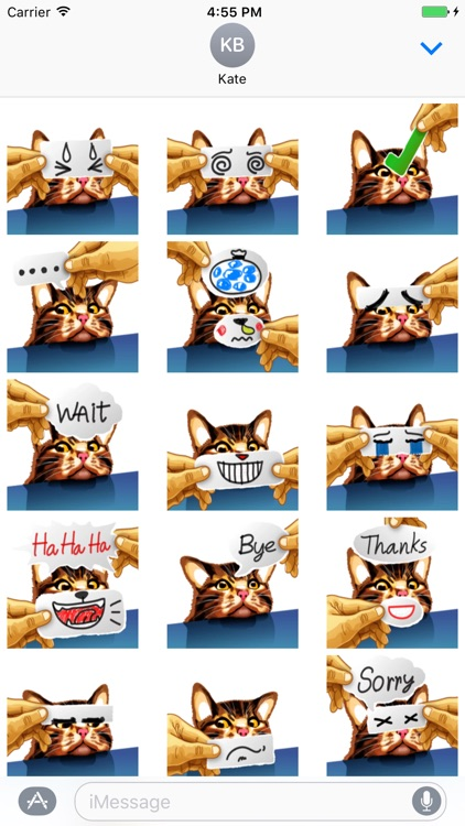 Meme Cat Sticker screenshot-1
