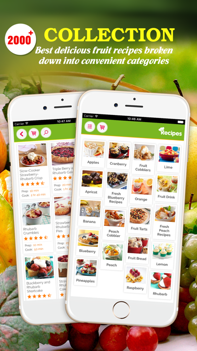 Yummy Fruit Recipes ~ Best of delicious fruit recipes screenshot one