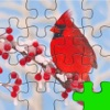 Birds Jigsaw Free - Collection Of Unique Puzzle Pics Of Falcons & Penguins