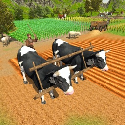 Village Farmers Simulator 3D